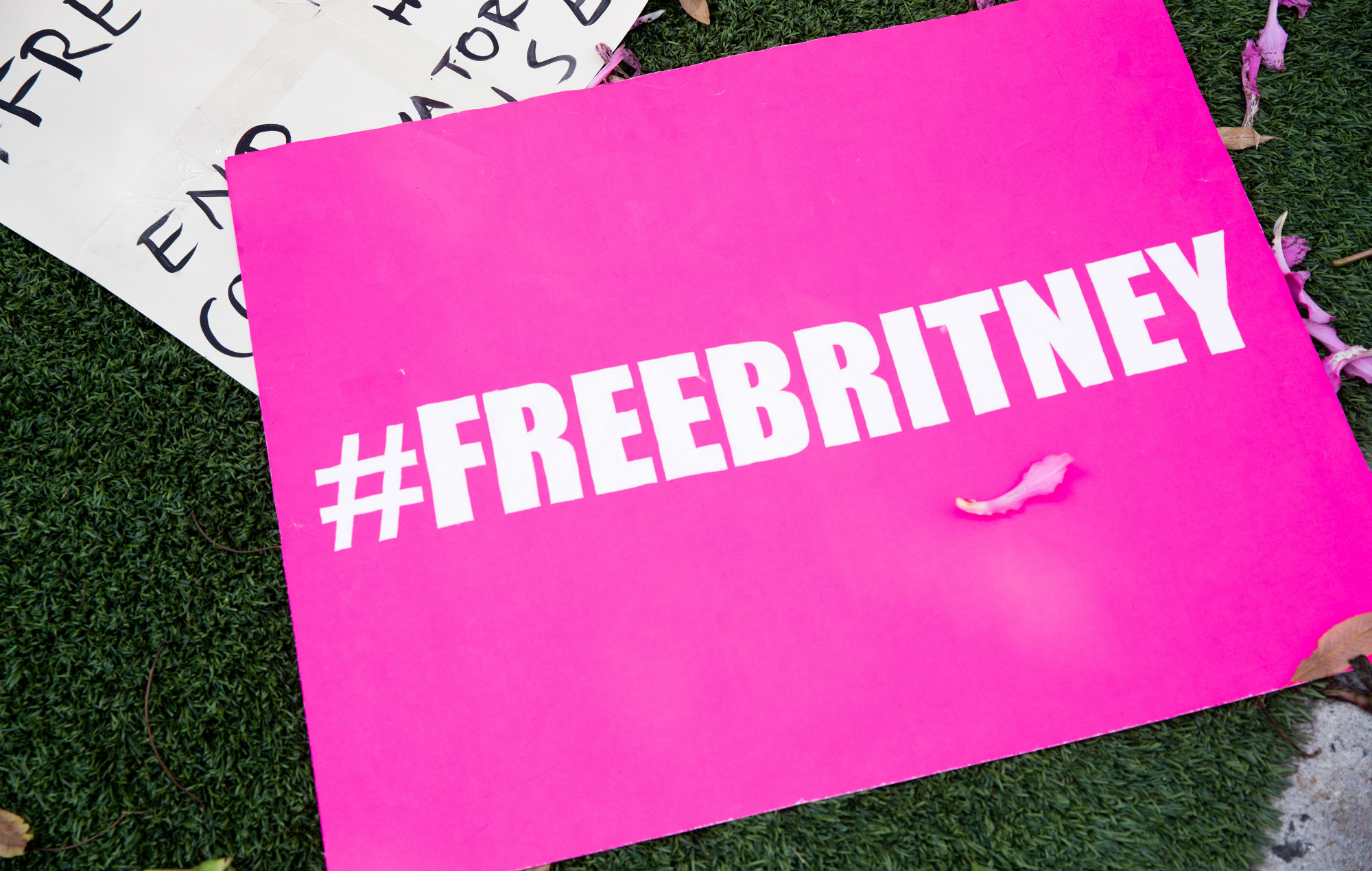 #FreeBritney Movement Poster